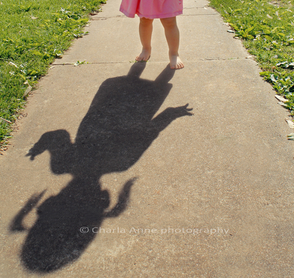 Lily's shadow