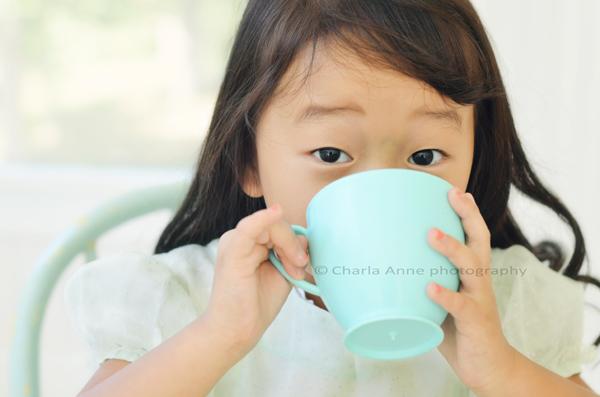 Copyright charla anne (4)