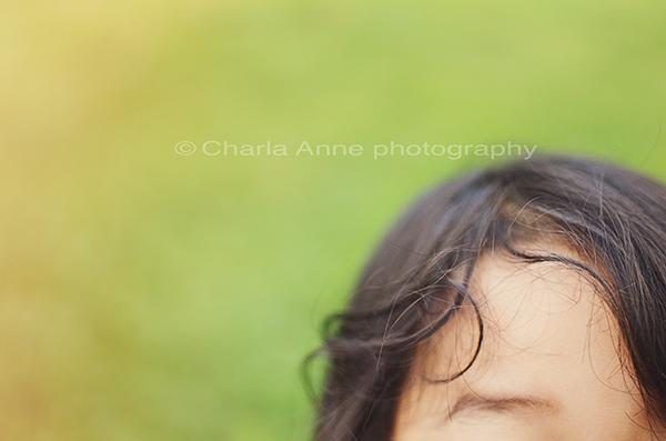 Copyright…charla anne